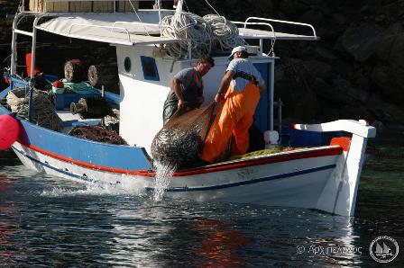Αλιεία-με-βιντζότρατα